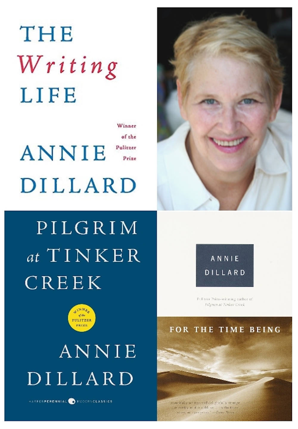 Silent All These Years: On Annie Dillard - The Millions